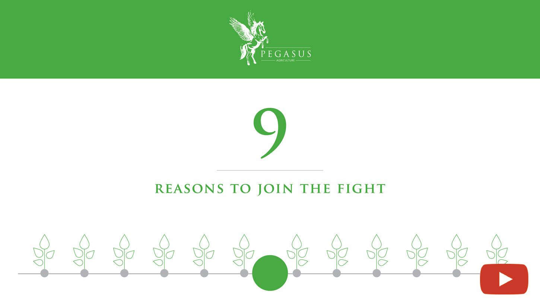 video-infografic-pegasus-9-reasons-01-01